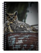 Great Horned Owl On Nest Spiral Notebook
