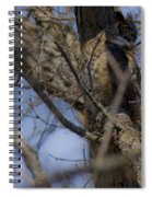 Great Horned Owl On Watch Spiral Notebook