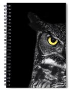 Great Horned Owl Photo Spiral Notebook