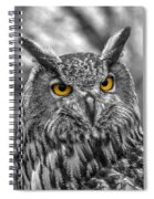 Great Horned Owl V9 Spiral Notebook
