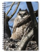 Great Horned Owlet Finishes Lunch Spiral Notebook