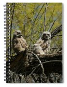 Great Horned Owlets 1 Spiral Notebook