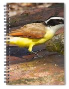 Great Kiskadee Spiral Notebook