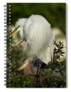 Great Egret Takes A Stance Spiral Notebook