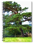 Great Pine Spiral Notebook