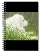 Great Pyrenees Dog In Grass Animal Pets Canine Art Spiral Notebook