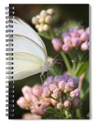 Great Southern White Butterfly On Pink Flowers Spiral Notebook