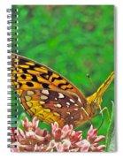 Great Spangled Fritillary Butterfly - Speyeria Cybele Spiral Notebook