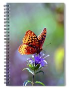 Great Spangled Fritillary Spiral Notebook