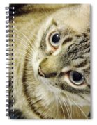 Missing You Baby Girl Spiral Notebook