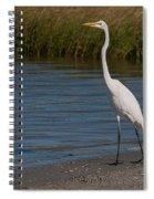 Great White 184 Spiral Notebook
