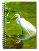 Great White Egret Bird With Deer And Fish In Lake  Spiral Notebook