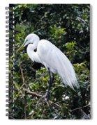 Great White Egret Building A Nest Viii Spiral Notebook
