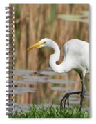 Great White Egret By The River Too Spiral Notebook
