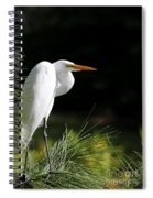 Great White Egret In The Tree Spiral Notebook