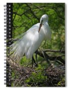 Great White Egret Primping Spiral Notebook