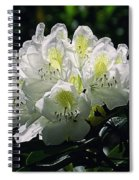 Great White Rhododendron Spiral Notebook