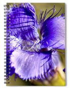 Greater Fringed Gentian Spiral Notebook