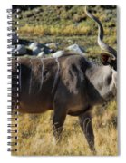 Greater Kudu Grazing Spiral Notebook
