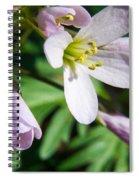 Greek Valerian 1 Spiral Notebook