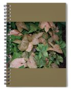 Green And Brown Leaves Spiral Notebook