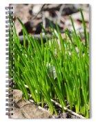 Green And Fresh Spiral Notebook