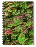 Green And Purple In Nature Spiral Notebook