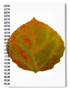 Green And Red Aspen Leaf 5 Spiral Notebook