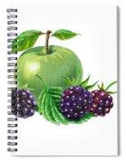 Green Apple With Blackberries Spiral Notebook