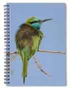 Green Bee-eater Merops Orientalis Spiral Notebook