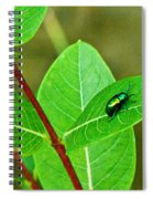 Green Beetle Foraging Spiral Notebook