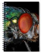 Green Bottle Fly Spiral Notebook