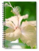 Green Bubble Dream Spiral Notebook
