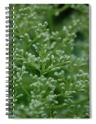 Green Bulbs By Jammer Spiral Notebook