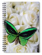 Green Butterfly With White Roses Spiral Notebook