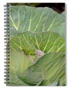 Green Cabbage Spiral Notebook