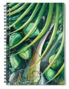 Green Coconuts  2  Spiral Notebook