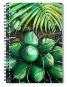 Green Coconuts  3  Sold Spiral Notebook