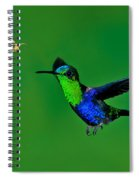 Green-crowned Woodnymph Spiral Notebook