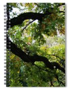 Green Days Spiral Notebook