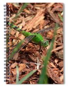 Green Dragon Spiral Notebook