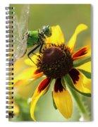 Green Dragonfly Spiral Notebook