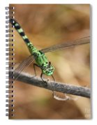 Green Dragonfly Square Spiral Notebook