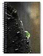 Green Droplet  Spiral Notebook