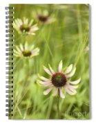 Green Envy Spiral Notebook