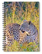 Green Eyed Leopard Spiral Notebook