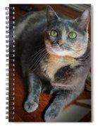 Green Eyes Spiral Notebook