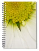 Green Fades To White Spiral Notebook