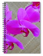 Green Field Sweetheart Orchid No 3 Spiral Notebook