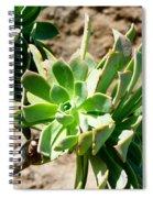 Green Flower Spiral Notebook